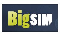 BigSIM