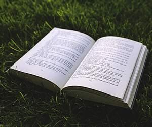 Buch bei AbeBooks