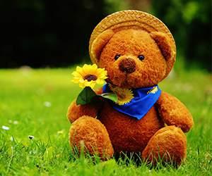 Teddybar bei Babies'R'Us