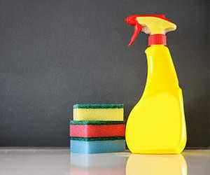 Reinigungsprodukte bei Agoshop