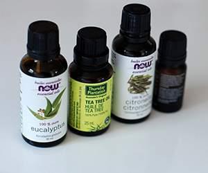 Produkte bei Bärbel Drexel