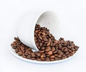 Produkte bei Coffeepolitan