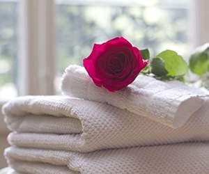 Handtücher bei Handtuch Welt