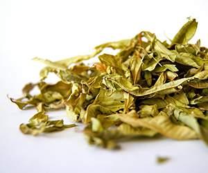 Tee bei KoRo Drogerie